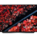 LG oferece maior TV OLED do mercado e demonstra displays por dentro